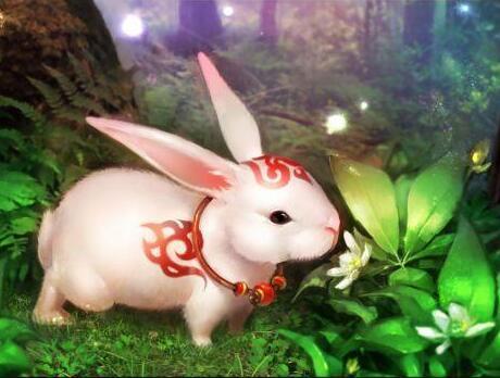 西游记中玉兔精的原型究竟是谁?有人说竟然是老虎